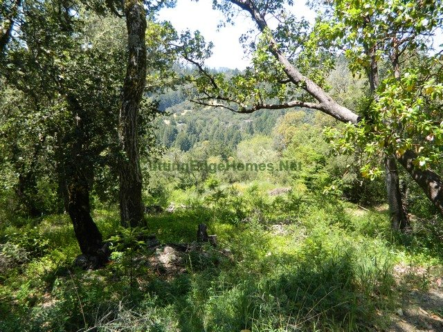 Mt-Charlie-Model-Santa-Cruz-Mountains-1